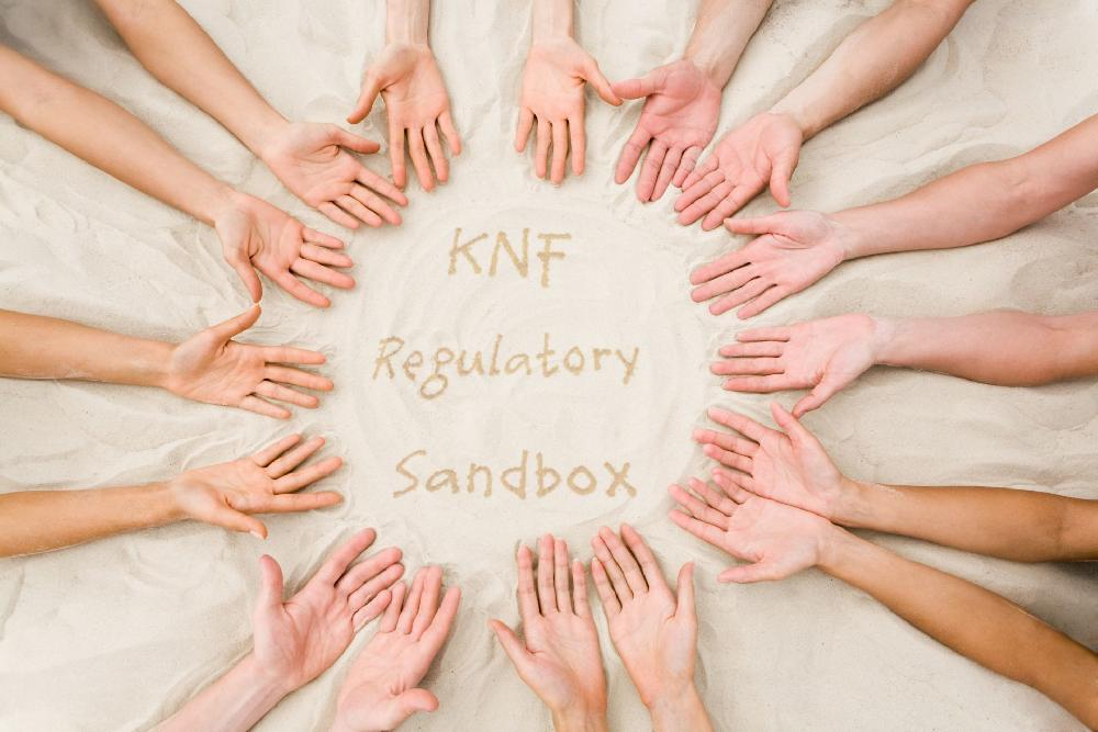 EN_v2_KNF_Regulatory_Sandbox_1920_q80